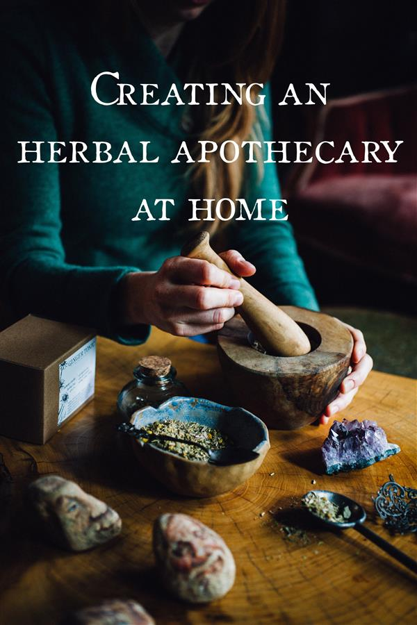 Creating An Herbal Apothecary At Home Ginger Tonic Botanicals